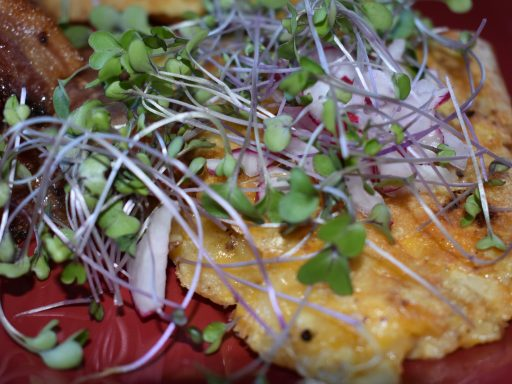 The Number One Reason You Should Eat MICROGREENS